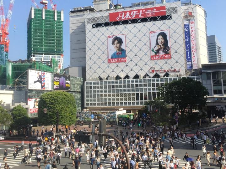 Travel Diary: Japan (Tokyo, Osaka, &Kyoto)